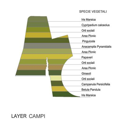 layer campi